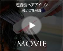 使用方法(動画)